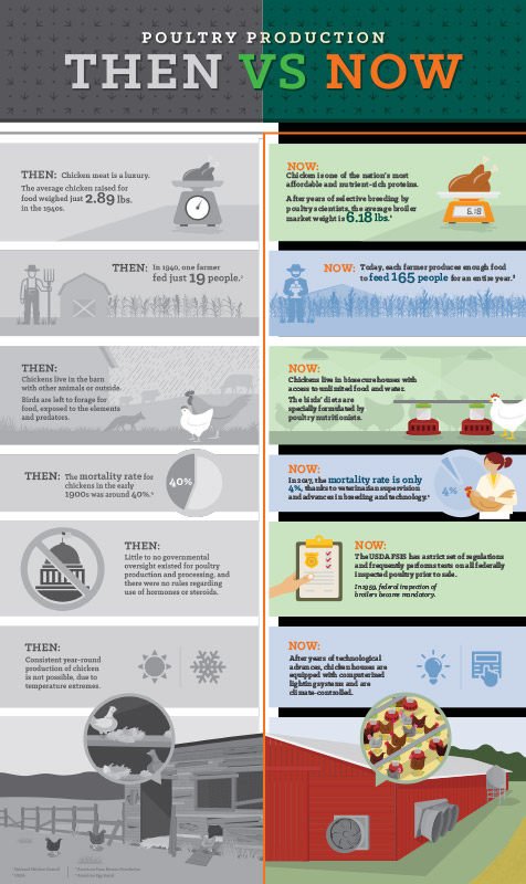 Sanderson Farms Then vs. Now Infographic